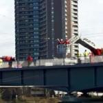 Möwe an Stahldraht verfangen – Sperrung Kurpfalzbrücke