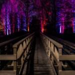 Gewinnspiel: Karten für die Winterlichter im Luisenpark