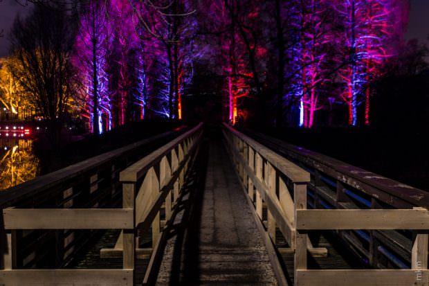Im letzten Jahr begeisterten die Winterlichter 35.000 Menschen | Foto: Stadtpark Mannheim gGmbH