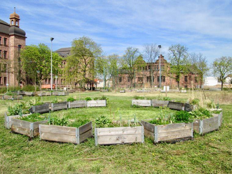 Der Turleyplatz ist inzwischen das grüne Herz der ehemaligen Kaserne | Foto: M. Schülke
