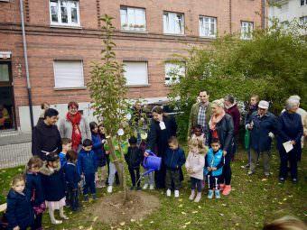 Die Evangelische Pfarrerin Judith Natho gießt das frisch gepflanzte Apfelbäumchen | Foto: M. Schülke