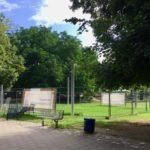 Herzogenriedpark muss als lebendige grüne Lunge erhalten bleiben