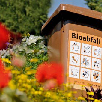 Biotonne (Symbolbild) | Foto: Stadt Mannheim