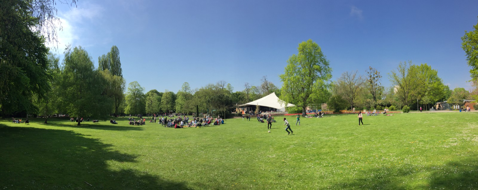 Sommer im Herzogenriedpark | Foto: M. Schülke