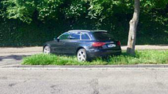 Kraftfahrzeuge dürfen auf Grünflächen nicht abgestellt oder gefahren werden | Foto: M. Schülke