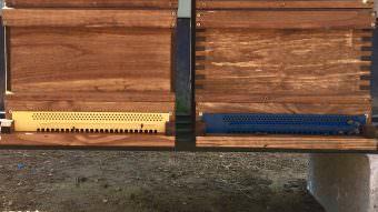 Die Schulkinder werden selbst den Bienenstock inspizieren, Rahmen herausnehmen und die Waben prüfen | Foto: C. Fuchs