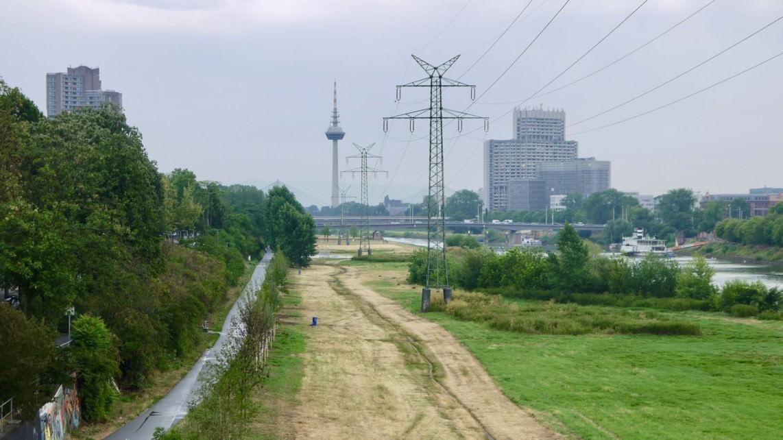 Die Neckarwiese (Symbolbild) | Foto: M. Schülke