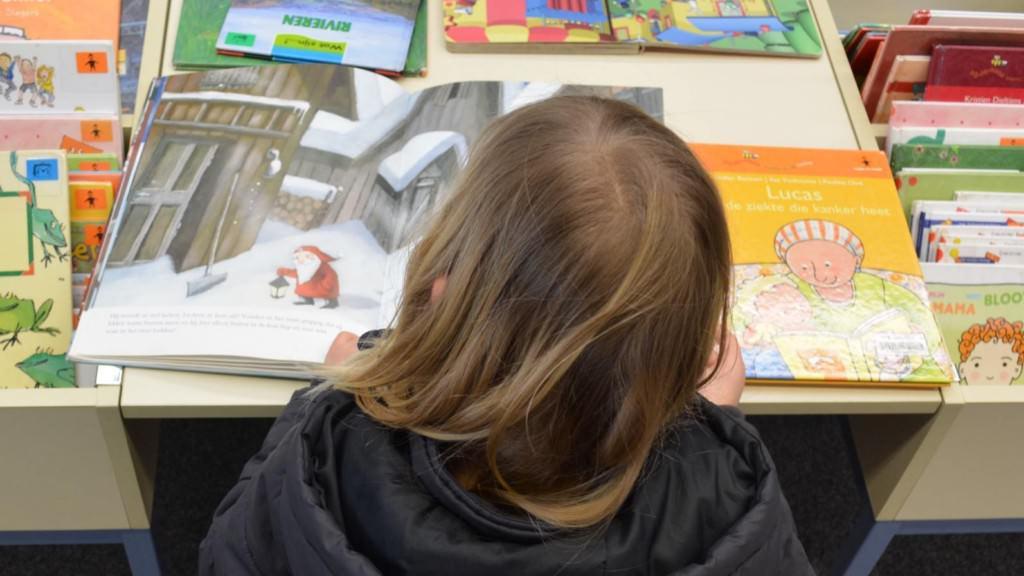 Lesendes Kind (Symbolbild) | Foto: Ben Kerckx (pixabay)