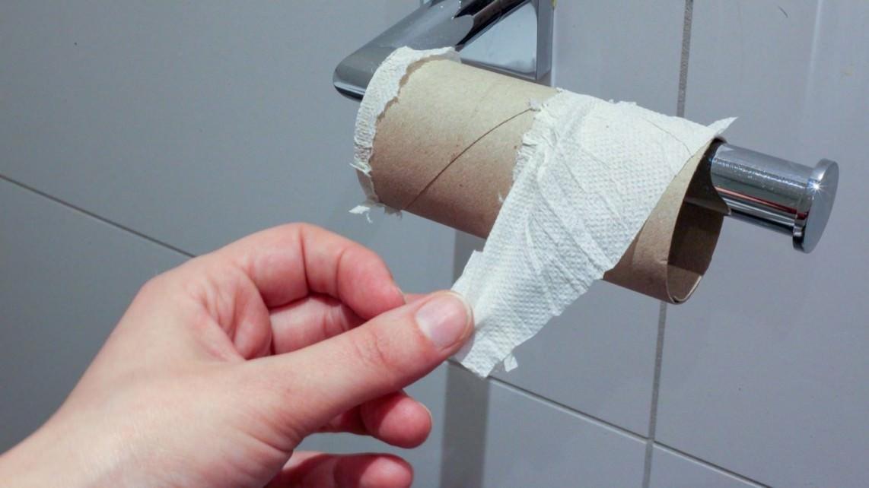 Nur Klopapier gehört in die Toilette (Symbolbild) | Foto: Jasmin Sessler (via Pixabay)