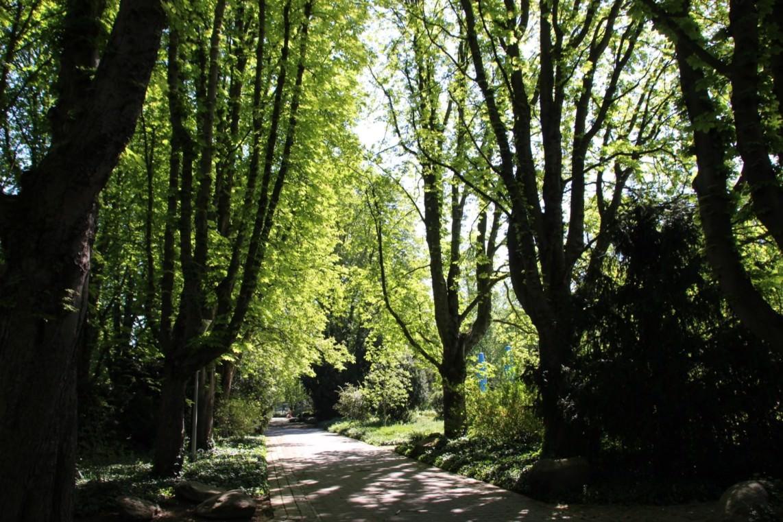 2020 04 22 herzogenriedpark 22 1142x761 - Stadtparks wegen Sturmwarnungen heute geschlossen