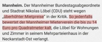 Das meinte der Mieterverein wirklich zu Löbels Mietpreisen | Screenshot: morgenweb.de