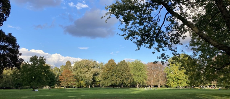 herzogenriedpark 2020 10 img 3130 1142x494 - Beide Stadtparks bis Ende November geschlossen
