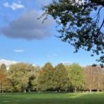 Beide Stadtparks bis Ende November geschlossen