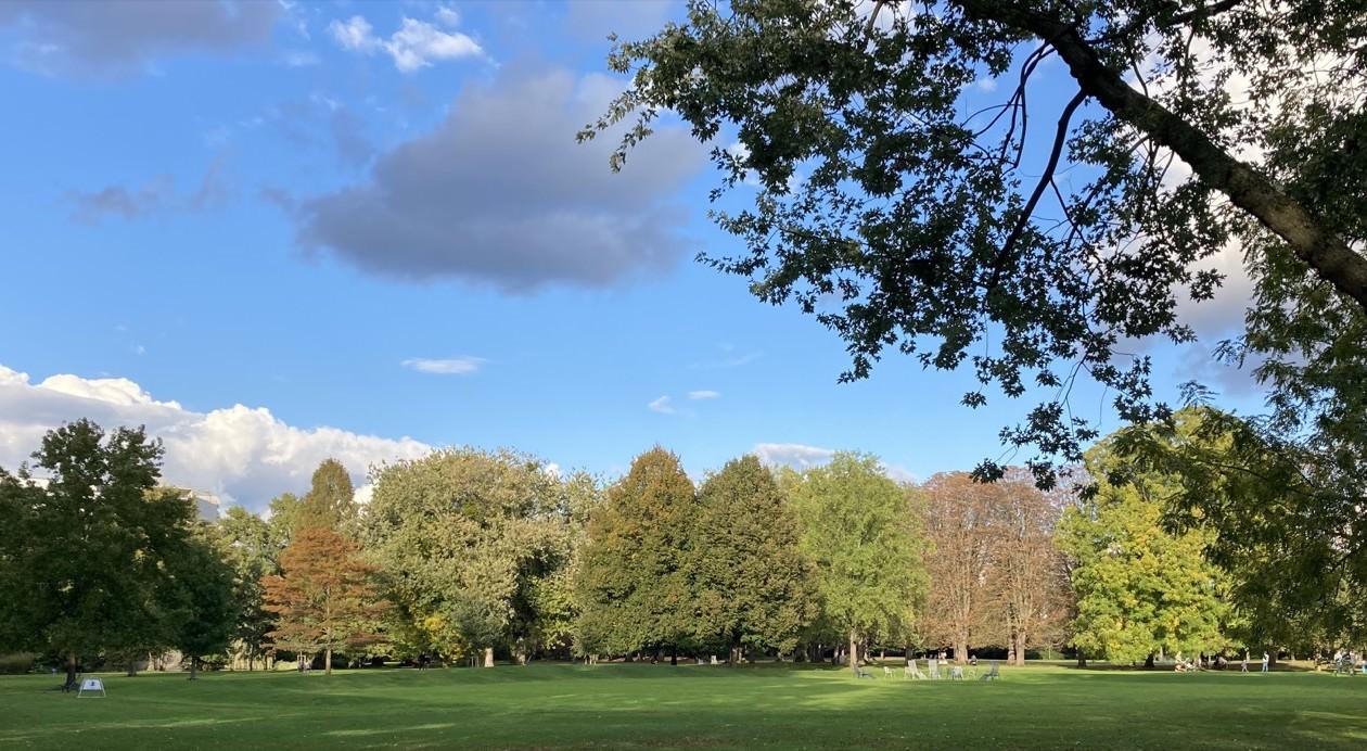 Der Herzogenriedpark im Herbst 2020 | Foto: M. Schülke