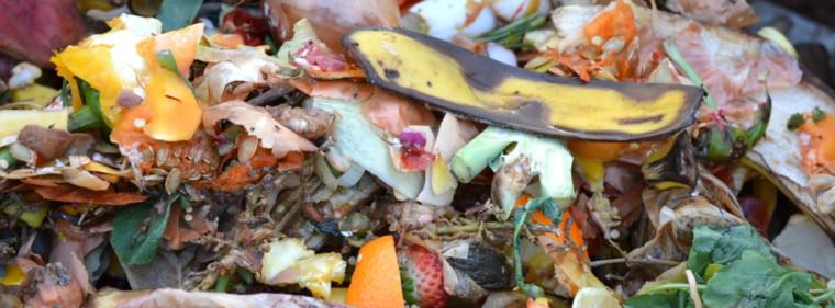 kompost 709020 ben kerckx pixabay 760x281 - kompost-709020-ben-kerckx-pixabay