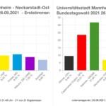 So hat die Neckarstadt gewählt