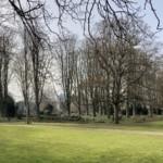 Sturmwarnung: Stadtparks und Friedhöfe heute geschlossen